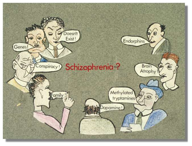 Free Schizophrenia Essays and Papers - 123HelpMe com
